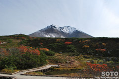 旭岳姿見の池駅からの眺め