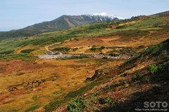 旭岳姿見の池コース(8)