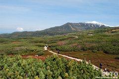旭岳姿見の池コース(14)