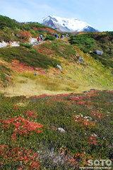 旭岳姿見の池コース(17)