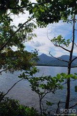 和琴半島自然探勝路(4)