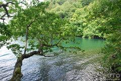 和琴半島自然探勝路(6)