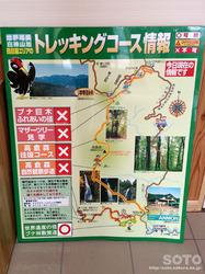 白神山地トレッキングコース情報