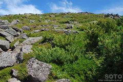 黒岳から石室へ(3)