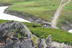 石室から黒岳へ(リス3)