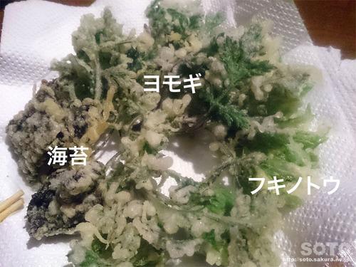 山小屋(山菜の天ぷら)
