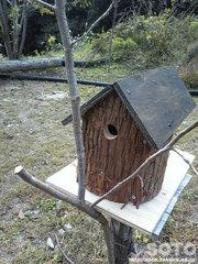 山小屋の鳥小屋