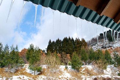 山小屋2011賀正(5)