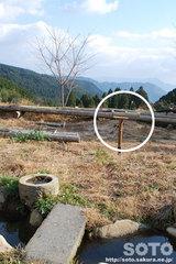 山小屋と餌台(2)